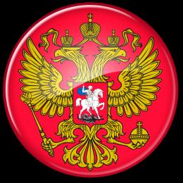 Коммуникационная патронажная служба Российской Федерации (Федеральная служба сиделок России)