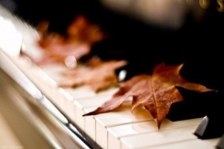 Наступает осень.