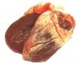 Сердце свиное