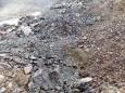 Вскрыша (скальный грунт)