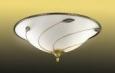 Потолочный светильник SONEX 4213 BARZO