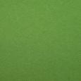 Фетр свежий, зеленый, 20х30 см