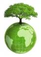 Составление карт современного иперспективного состояния окружающей среды