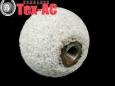 Ракушечник шар, 60мм, «TipTop»