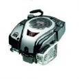 Двигатель Briggs&Stratton 700 SERIES I/C® DOV® Модель 1008
