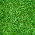 Искусственная трава Optigrass PLUS MF