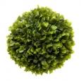 Зеленый с крупными листьями