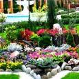 Альпийские горки, рокарии, каменистые сады