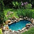 Декоративные водоемы, ручьи