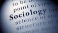Курсовая по социологии