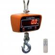 Промышленные электронные крановые весы ВЭК-1000