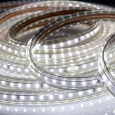 357250 NT15 351 белый свет  Лента светодиодная 1м  IP65  120LED/м 7W/м 220V LED-STRIP