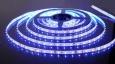 Светодиодная лента3528/60 LED 4.8W IP20 [белая подложка] синий свет