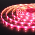 Светодиодная лента5050/30 LED 7,2 W IP65 розовый свет