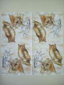 Салфетка для декупажа 547, «Мудрые совы». Челябинск