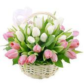К29 Весенние цветы. Челябинск