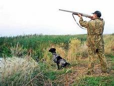 Мед. справка для получения/продления лицензии на оружие — для ОХОТЫ. Челябинск