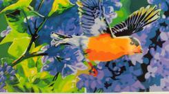 RSB0279 Картины по номерам в ассортименте формат 40*50. Челябинск
