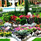 Альпийские горки, рокарии, каменистые сады. Челябинск