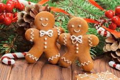 «Рождественские каникулы в Москве»